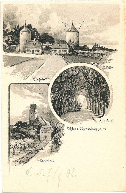 Schloss Grosslaupheim (Vorderseite der Ansichtskarte)
