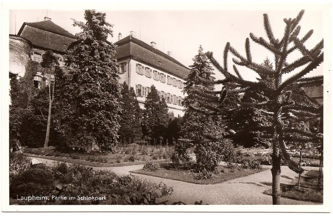 Laupheim Partie am Schlosspark (Vorderseite der Ansichtskarte)