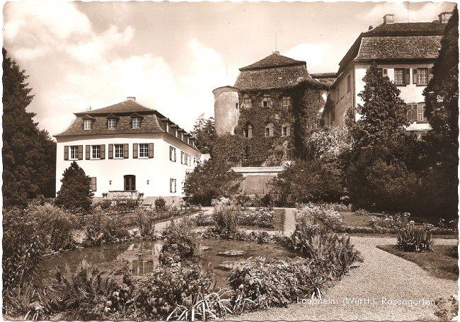 Laupheim (Württ.). Rosengarten (Vorderseite der Ansichtskarte)