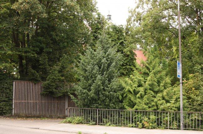 Laupheim Partie b. Schloß (heutige Ansicht)
