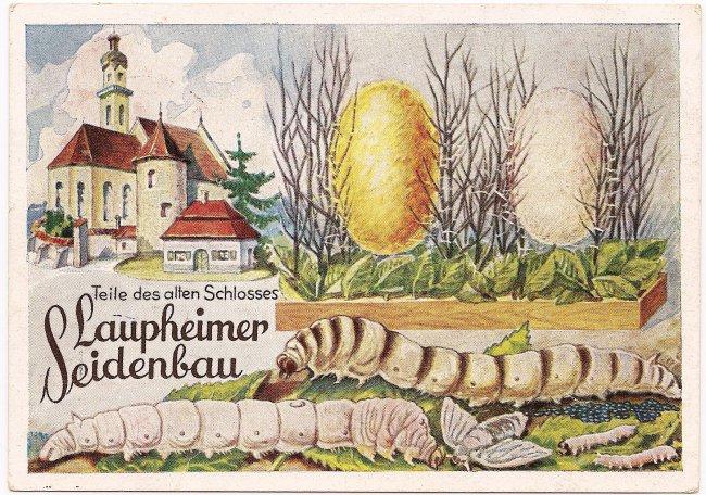 Laupheimer Seidenbau (Vorderseite der Ansichtskarte)